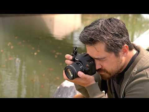 Canon SL3 Review by DPreviewTV
