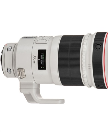 New Rumor: Canon to launch a Canon RF 300mm 2.8 L IS USM in 2020