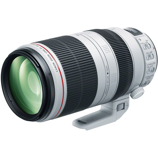 New Rumor: Canon RF 100-500 on it's way