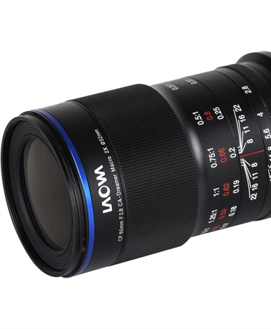 Laowa 65mm f/2.8 2x Ultra Macro APO Review