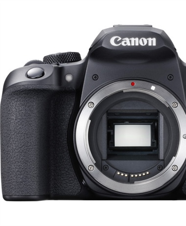 Canon delays shipping the Canon Rebel T8i/850D