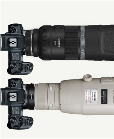 The Canon RF 600 and 800mm INSANE prices have leaked - Supertelephotos...