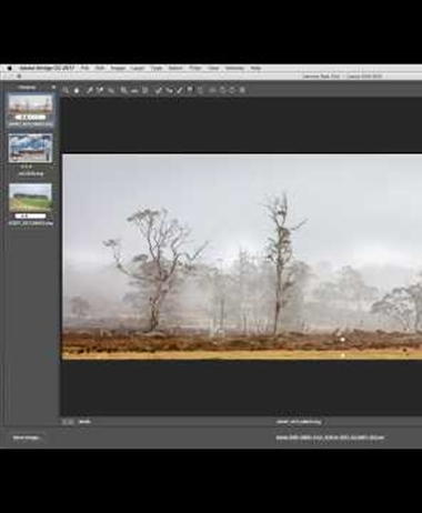 Adobe releases ACR 10 - adds range masking